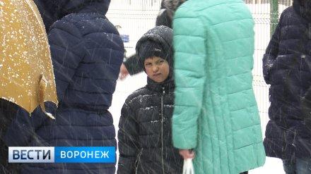 Вёдра с чаем и двойная защита. Как прошли 2 часа приёма заявлений в новую школу Воронежа