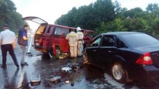 Выжила только девочка. Полиция сообщила подробности ДТП с 8 погибшими под Воронежем