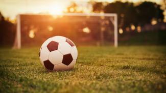 Воронежская область сдала позиции в рейтинге игровых видов спорта