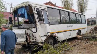 В Воронеже число пострадавших в ДТП пассажиров маршрутки выросло до семи