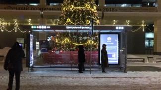 В Воронеже через Центральный рынок пустят ещё один популярный маршрут