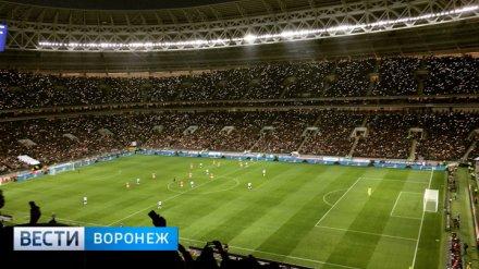 Воронежец рассказал о впечатлениях от обновлённых «Лужников» и матче Россия – Аргентина