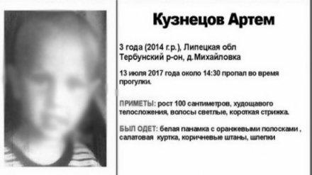 Срочно: Под Воронежем пропавшего 3-летнего мальчика нашли мёртвым