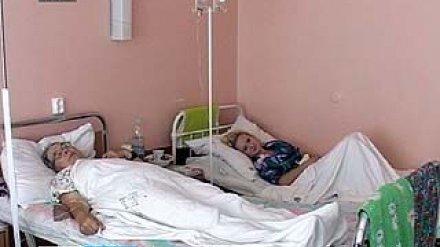 В Воронежском регионе уже отравились грибами 40 человек