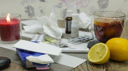 Более 8,8 тыс. воронежцев за неделю обратились к врачам из-за симптомов ОРВИ
