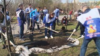 Экологический субботник в Воронежской области собрал рекордное число участников