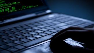 В Воронеже хакера наказали за продажу паролей к чужим страницам «ВКонтакте»