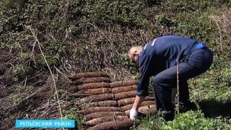 250 снарядов прямо во дворе обнаружил житель села Истобное