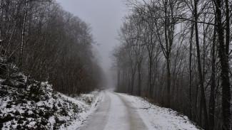 Жителей Воронежской области предупредили об опасном тумане и гололёде