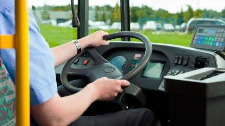 В Воронеже маршрутчика оштрафовали за проезд на «красный» и опасный поворот