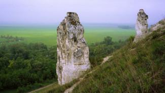 Воронежский заповедник «Дивногорье» может стать самым «любимым музеем»