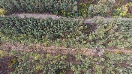 В Воронеже начали строить дорогу для микрорайона «Электроника»