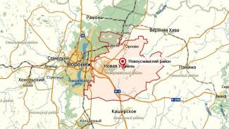 Некоторые территории Новоусманского района могут стать частью Воронежа