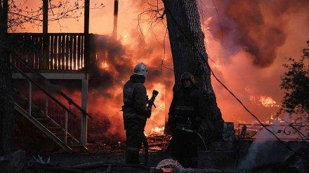 Причины крупного пожара в рыбацком посёлке под Воронежем выяснят при расследовании дела