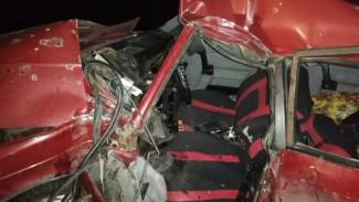 В Воронежской области разбился влетевший в дерево водитель «Москвича»