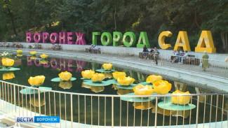 В Воронеже подешевела разработка концепции фестиваля «Город-сад»