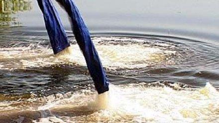 В Воронежском водохранилище появились новоселы
