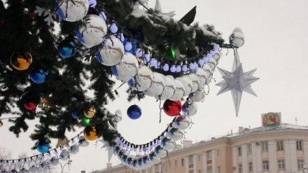 Антимонопольщики разрешили властям Воронежа выбрать подрядчика для установки главной ёлки