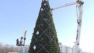В мэрии всё-таки решили убрать ёлку с площади Ленина