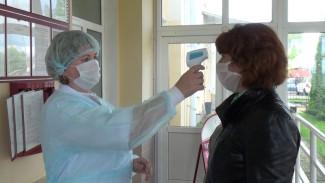 В Воронежской области выявили 387 случаев заражения COVID-19за сутки
