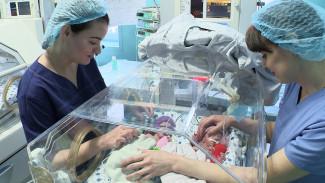 Торопятся появиться на свет. Как в Воронеже спасают жизни недоношенных детей
