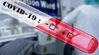 В Черноземье коронавирусом заболели 1243 человека