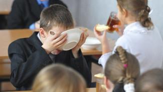 Воронежский СК опроверг данные о 160 школьниках, отравившихся после обеда в столовой