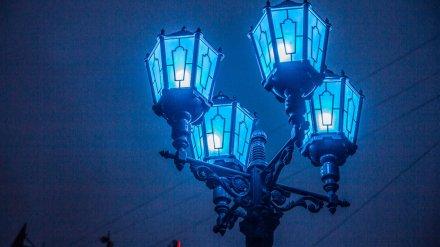 Здания в центре Воронежа подсветят синим в поддержку людей с аутизмом