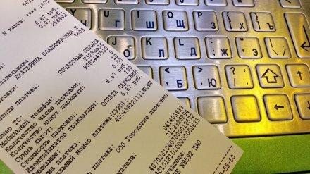 Общественник призвал воронежцев жаловаться на платные парковки в прокуратуру