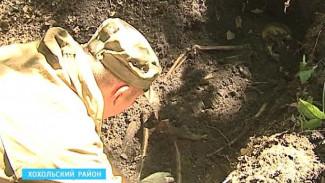 Найдены боеприпасы времен войны и останки двух солдат в Хохольском районе