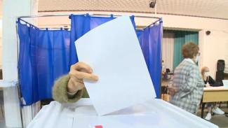 В Воронежской области досрочно проголосовали 29,68% избирателей