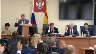Никакой конкретики. Воронежские депутаты большинством голосов приняли стратегию-2035