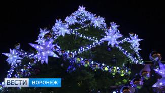 Мэрия Воронежа сэкономила на установке главной новогодней ёлки более 600 тыс. рублей