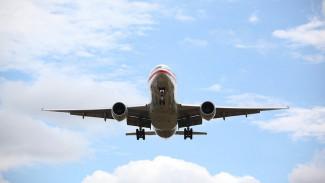 Летевший в Воронеж из Тюмени самолёт экстренно сел в Екатеринбурге