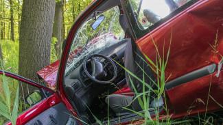 В Воронежской области в результате ДТП с деревом пострадали 4 человека