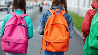 Проблему с пешеходными переходами возле воронежских школ решат до конца года