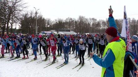 Массовую гонку «Лыжня России» отменили в Воронеже из-за отсутствия снега