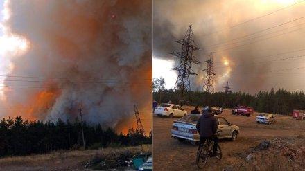 МЧС подключит вертолёт для спасения Воронежской области от огненного шторма