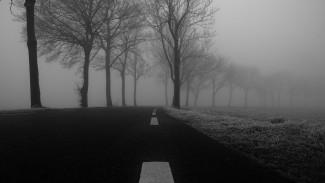 Новая неделя встретит воронежцев туманом и гололёдом
