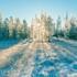 В Воронежской области похолодает до -30