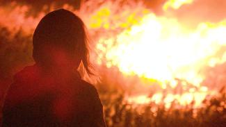 Поджигателей травы в Воронежской области в сентябре оштрафовали на 1,4 млн рублей