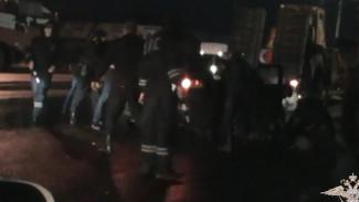 Воронежская полиция показала задержание банды рэкетиров, «кошмаривших» фермеров