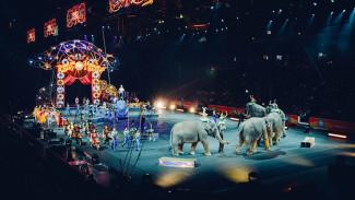 В России предложили не пускать детей на цирковые представления