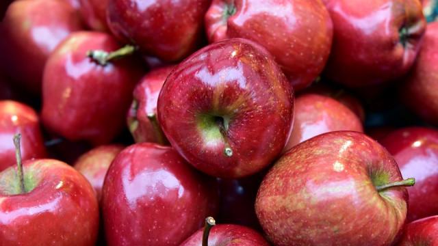 Под Воронежем уничтожили более 2 тонн санкционных яблок
