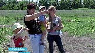 Бутурлиновским многодетным семьям выделили земельные участки