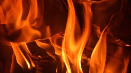 Ночью из горящего дома в Воронежской области эвакуировали трёх человек