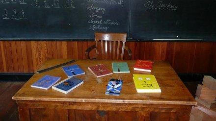 Коронавирус выявили более чем у 500 учителей в Воронеже