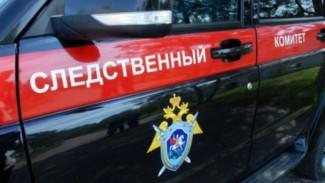 СК проверит воронежских чиновников после скандала с детскими путёвками