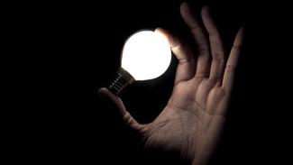 Воронежские власти обсудили с МРСК Центра перспективы развития электросетей в регионе