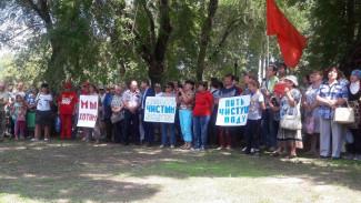 «Наша боль». Более 100 воронежцев вышли на митинг против вони